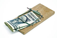 Ein Dollarschein in einem Mousetrap Stockfotografie