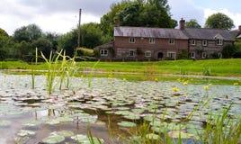 Ein Dorf-Teich in Dorset, Großbritannien Lizenzfreie Stockbilder
