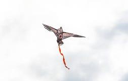 Ein Drachen am bewölkten Himmel Lizenzfreie Stockfotografie