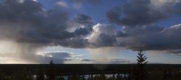 Ein dunkler Wald und ein blauer Himmel mit Regen Stockfotografie
