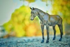 Ein dunkles Pferd in einem grünen bokeh stockbilder