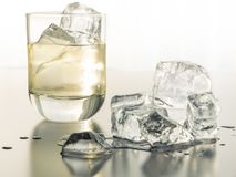 Ein durstlöschendes Glas Tequila auf den Felsen lizenzfreies stockbild