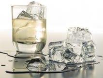 Ein durstlöschendes Glas Tequila auf den Felsen stockfotos