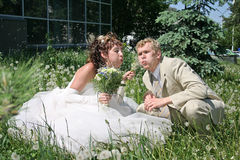 Ein eben verheiratetes Paar. Stockfotografie