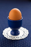 Ein Ei auf einem blauen Hintergrund Lizenzfreie Stockbilder