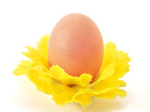Ein Ei in den dekorativen Blumen Lizenzfreies Stockbild