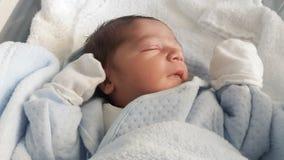 Ein eines-Tag-alt neugeborenes Baby Stockfotos