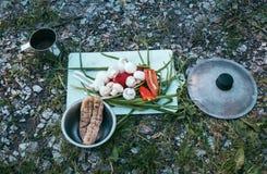 Ein einfaches Picknick auf dem Gras Draufsicht des Lebensmittels lizenzfreie stockfotos