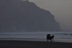 Ein einsamer Durchgang durch einen ruhigen Strand Lizenzfreies Stockbild
