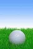 Ein einzelner Golfball auf Gras Stockfoto