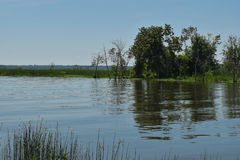 Ein einziger Kayaker steht auf einem ruhigen Teich im Spätsommer still Lizenzfreie Stockbilder