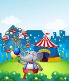 Ein Elefant mit Ballonen vor einem Karneval Lizenzfreies Stockbild