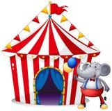 Ein Elefant vor dem Zelt am Karneval Lizenzfreie Stockfotografie