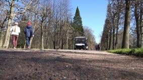 Ein Elektroauto transportiert Touristen im Parkbereich stock video