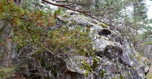 Ein enormer Flussstein in den Nord-Ossetien Lizenzfreie Stockfotos
