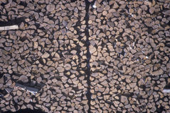 Ein enormer Holzstoß an einer Bauholzmühle in Vermont Lizenzfreie Stockfotos