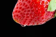 Ein Erdbeermakro Lizenzfreies Stockbild