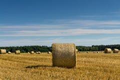 Ein Erntefeld nach Ernte Stockfotos
