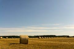 Ein Erntefeld nach Ernte Lizenzfreies Stockfoto