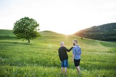 Ein erwachsener Hippie-Sohn mit dem älteren Vater, der in Natur bei Sonnenuntergang geht lizenzfreie stockbilder