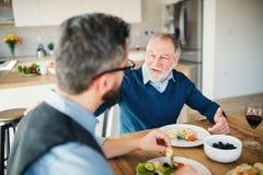 Ein erwachsener Hippie-Sohn und ein älterer Vater zuhause zu Hause, das helle Mittagessen essend stockfotos
