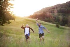 Ein erwachsener Hippie-Sohn und sein älterer Vater, die in Natur bei Sonnenuntergang springen stockbilder