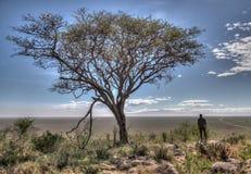 Ein erwachsener Mann auf Safari in Afrika stockfoto