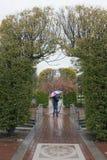 Ein erwachsener Mann geht allein in Regen mit einem Regenschirm Lizenzfreies Stockbild