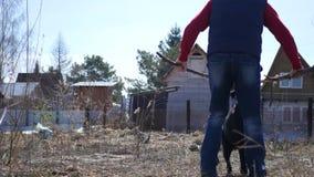 Ein erwachsener Mann im Land spielt mit einem Hund mit einem großen Stock, ein Labrador-Sprünge, Zupacken ein Stock mit seinen Zä stock video footage