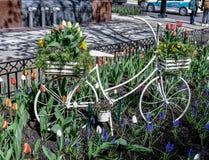Ein Fahrrad-Pflanzer stockfoto
