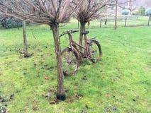 Ein Fahrrad verloren im Park Lizenzfreie Stockfotografie