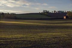 Ein Feld in der Landschaft lizenzfreies stockfoto