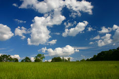Ein Feld und ein Himmel Lizenzfreie Stockfotografie