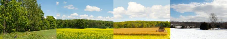 Ein Feld, vier Jahreszeiten. Lizenzfreie Stockbilder