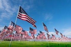 Ein Feld von den amerikanischen Flaggen, die einen Denkmal- oder Veteranentag gedenken Stockfotos