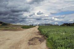 Ein Feldweg, der zwischen den Bögen führt Stockfotografie