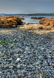Ein felsiger Strand außerhalb Victorias, BC Lizenzfreie Stockbilder