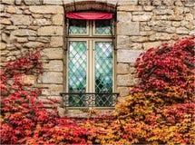 Ein Fenster umgeben durch Blätter im Herbst lizenzfreie stockfotos