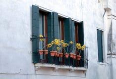 Ein Fenster von der Stadt von Venedig mit Dekorationen stockbilder