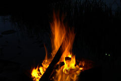 Ein Feuer in der Nacht Lizenzfreie Stockbilder