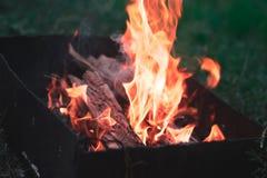 Ein Feuer in der Natur in einem Wald mit einem unscharfen Hintergrund Lizenzfreie Stockfotografie