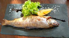 Ein Fisch lizenzfreies stockbild