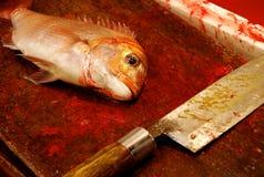 Ein Fisch und ein Messer Lizenzfreies Stockbild