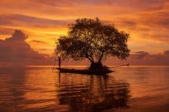 Ein Fischer auf longtail Boot und einem Korkenbaum agianst schönen Himmelhintergrund lizenzfreie stockfotos