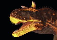 Ein Fleisch, das Carnotaurus-Dinosaurier im Gelb und im Schwarzen isst Stockfotos
