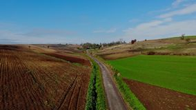 Ein Flug über bebauten Feldern stock video