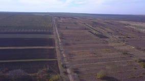 Ein Flug über bebauten Feldern stock video footage