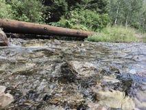 Ein Fluss in den Bergen stockbilder