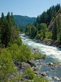 Ein Fluss, der einen Gebirgswald durchfließt Lizenzfreies Stockbild