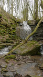 Ein Flussfluß/-wasserfall im Margarethenschlucht lizenzfreies stockfoto